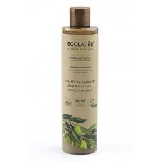 Шампунь-бальзам для волос 2в1 Мягкость и Блеск Organic Olive, 350 мл