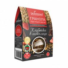 """Гранола """"Клубника в шоколаде"""" Polezzno, 250 гр"""