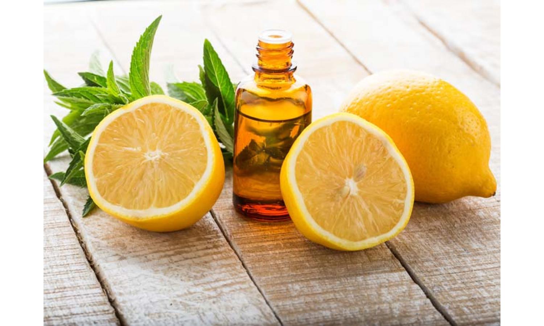 Съедобные ингредиенты косметических средств: шоколад, ваниль, корица, цитрус
