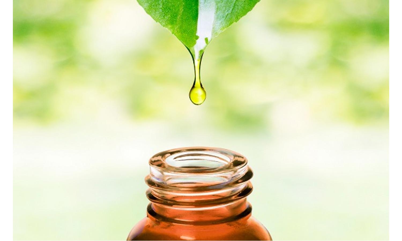 Эфирное масло – душа растения для красоты, здоровья и радости